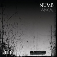 Abica Album: Numb with 3 Tracks composed & produced by TweakerRay